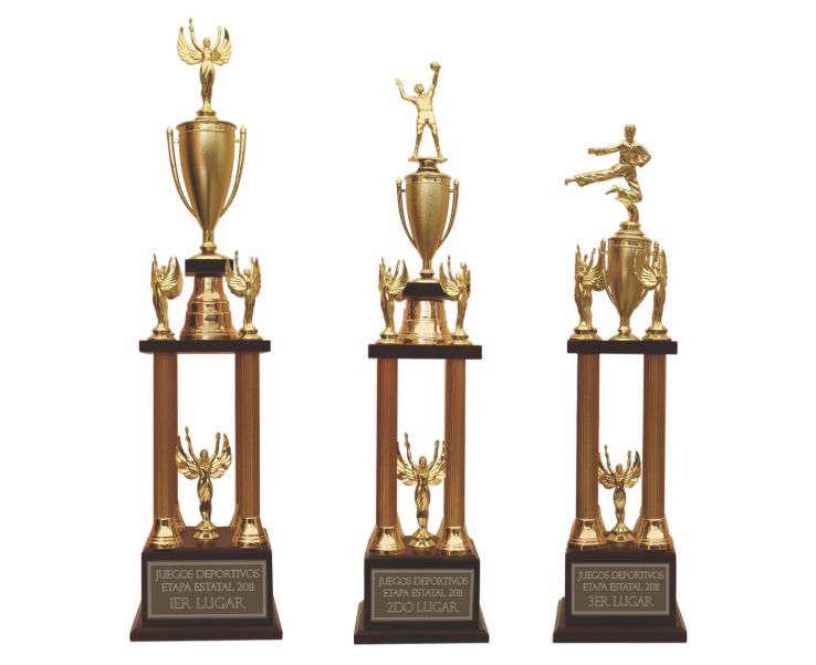 imagen de 3 reconocimientos de diversos tamaños con columnas, copas y figuras volley ball, karate y placa grabada en diamante