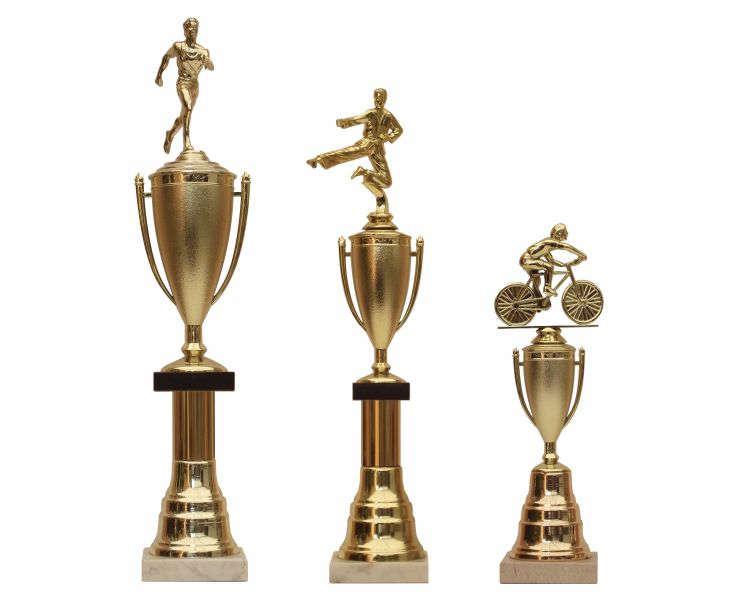 Imagen de 3 trofeos de diferentes tamaños con copa para futbol, karate y ciclismo
