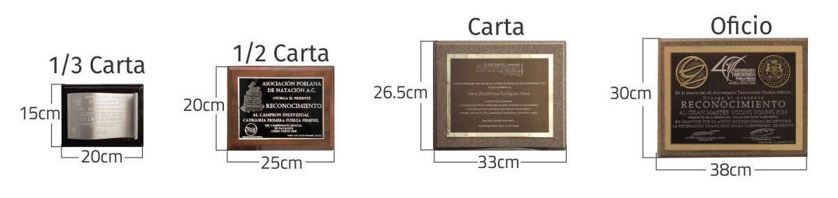 Imagen de 4 reconocimientos mostrando los diferentes tamaños y formatos: 1/3 carta, 1/2 carta, carta y oficio